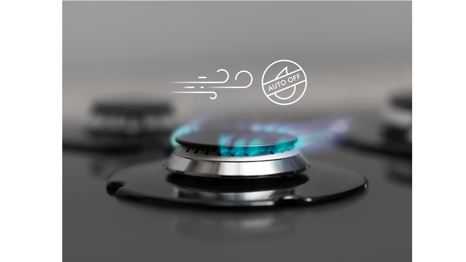 Flame Failure Safety Device